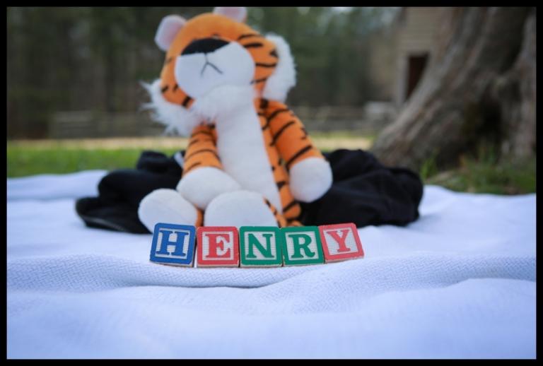 www.imagesinplay.com_Henry_0121